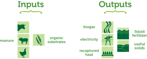 anaerobic-digester-inputs-outputs